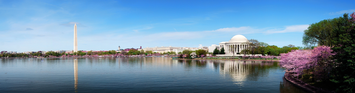 Washington DC The Tidal Basin with Cherry Blossoms