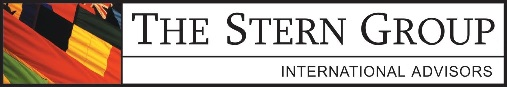 The Stern Group Logo